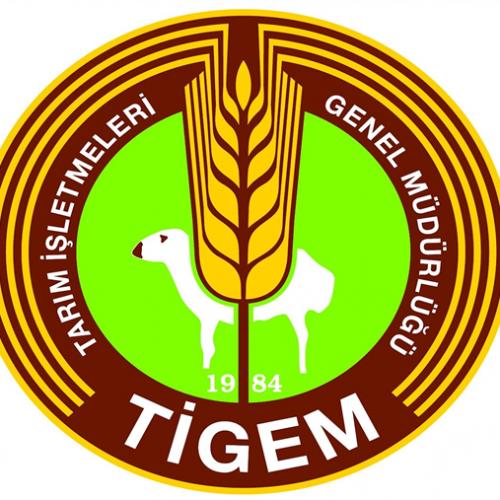 Çukurova Tarım İşletmesi Müdürlüğü Mahsül Buğday Satış İhalesi
